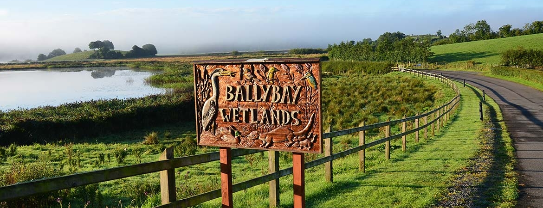 Ballybay Wetlands